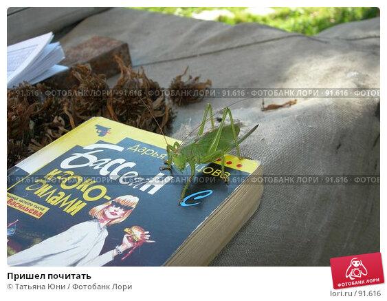Пришел почитать, эксклюзивное фото № 91616, снято 30 сентября 2007 г. (c) Татьяна Юни / Фотобанк Лори