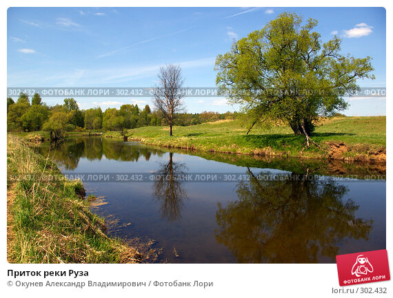 Купить «Приток реки Руза», фото № 302432, снято 10 мая 2008 г. (c) Окунев Александр Владимирович / Фотобанк Лори