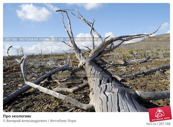 Купить «Про экологию», фото № 207168, снято 2 сентября 2007 г. (c) Валерий Александрович / Фотобанк Лори