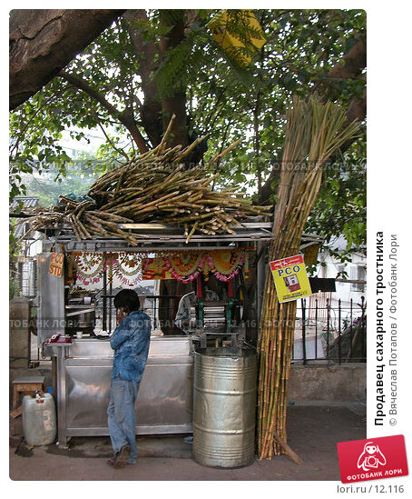 Продавец сахарного тростника, фото № 12116, снято 7 декабря 2004 г. (c) Вячеслав Потапов / Фотобанк Лори