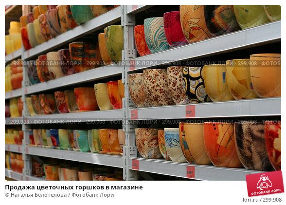 Продажа цветочных горшков в магазине, фото № 299908, снято 1 мая 2008 г. (c) Наталья Белотелова / Фотобанк Лори