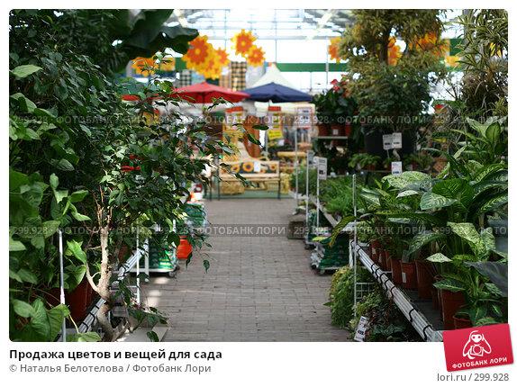 Продажа цветов и вещей для сада, фото № 299928, снято 1 мая 2008 г. (c) Наталья Белотелова / Фотобанк Лори