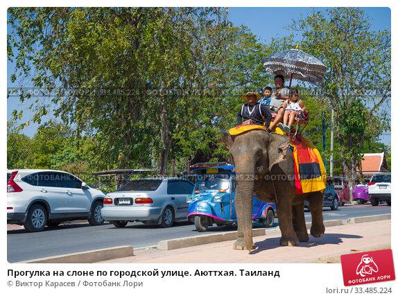 Купить «Прогулка на слоне по городской улице. Аюттхая. Таиланд», фото № 33485224, снято 1 января 2017 г. (c) Виктор Карасев / Фотобанк Лори