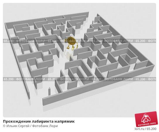 Прохождение лабиринта напрямик, иллюстрация № 65200 (c) Ильин Сергей / Фотобанк Лори
