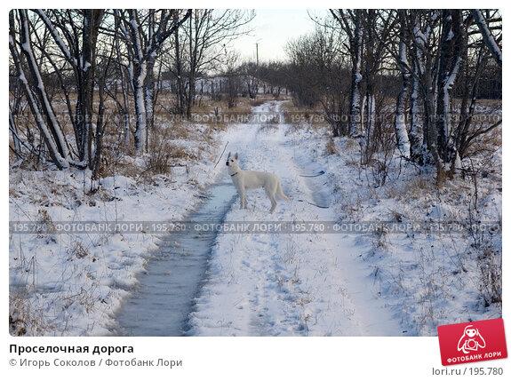 Проселочная дорога, фото № 195780, снято 3 февраля 2008 г. (c) Игорь Соколов / Фотобанк Лори