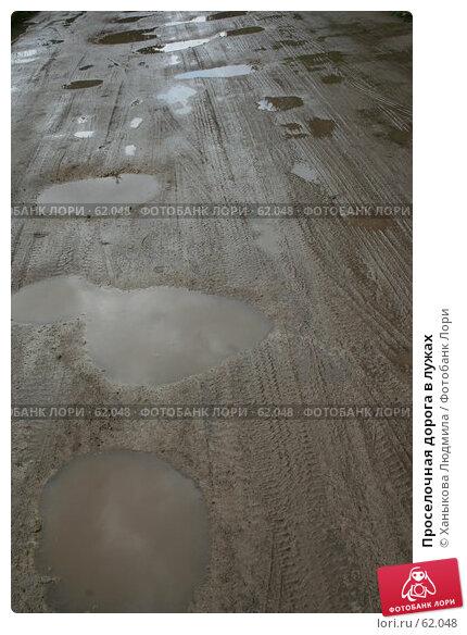 Проселочная дорога в лужах, фото № 62048, снято 15 июля 2007 г. (c) Ханыкова Людмила / Фотобанк Лори