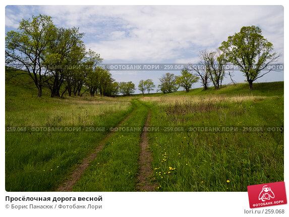 Просёлочная дорога весной, фото № 259068, снято 19 апреля 2008 г. (c) Борис Панасюк / Фотобанк Лори