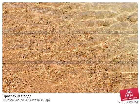 Прозрачная вода, фото № 265136, снято 11 октября 2007 г. (c) Ольга Сапегина / Фотобанк Лори