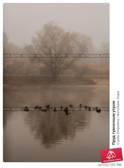 Купить «Пруд туманным утром», фото № 157700, снято 30 октября 2007 г. (c) Julia Shepeleva / Фотобанк Лори