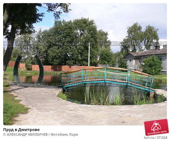 Пруд в Дмитрове, фото № 37024, снято 26 августа 2006 г. (c) АЛЕКСАНДР МИХЕИЧЕВ / Фотобанк Лори