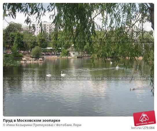 Пруд в Московском зоопарке, эксклюзивное фото № 279084, снято 29 июля 2007 г. (c) Инна Козырина (Трепоухова) / Фотобанк Лори