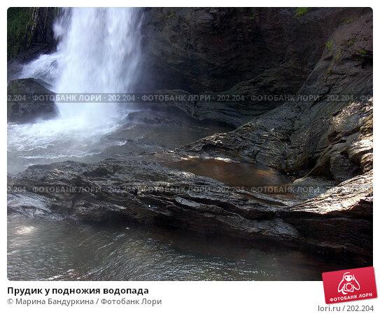 Прудик у подножия водопада, фото № 202204, снято 16 ноября 2005 г. (c) Марина Бандуркина / Фотобанк Лори