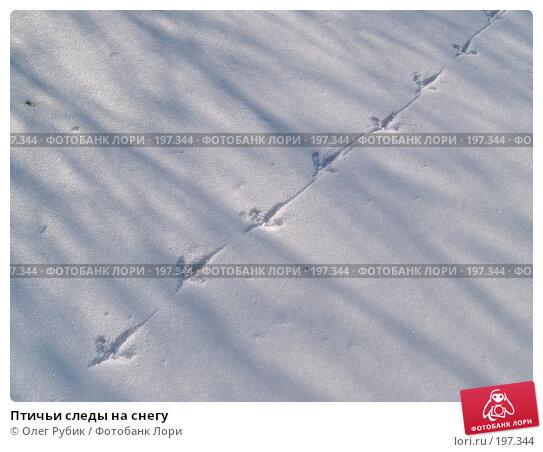 Птичьи следы на снегу, фото № 197344, снято 5 февраля 2008 г. (c) Олег Рубик / Фотобанк Лори