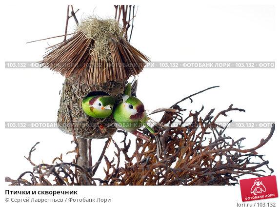 Птички и скворечник, фото № 103132, снято 3 декабря 2016 г. (c) Сергей Лаврентьев / Фотобанк Лори