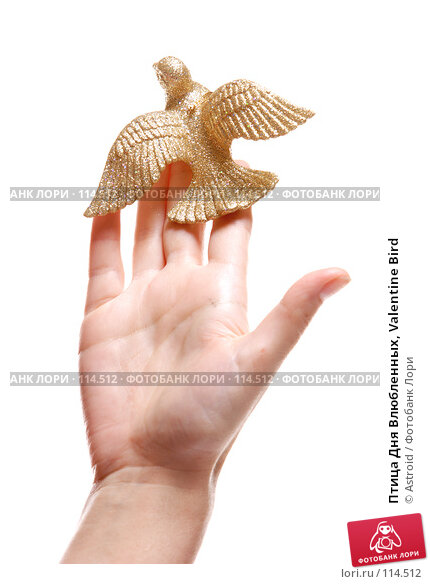 Птица Дня Влюбленных, Valentine Bird, фото № 114512, снято 9 января 2007 г. (c) Astroid / Фотобанк Лори