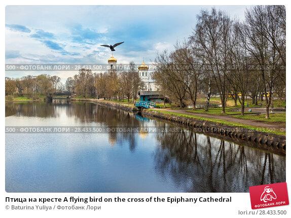Купить «Птица на кресте A flying bird on the cross of the Epiphany Cathedral», фото № 28433500, снято 1 мая 2018 г. (c) Baturina Yuliya / Фотобанк Лори