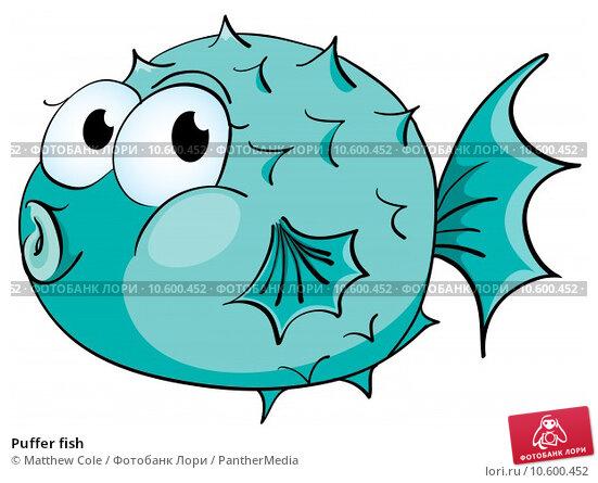 Puffer fish. Стоковая иллюстрация, иллюстратор Matthew Cole / PantherMedia / Фотобанк Лори