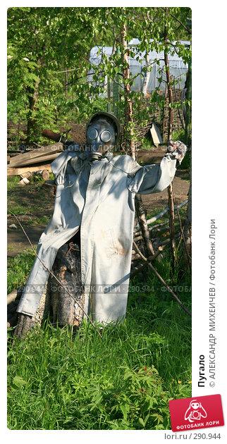 Пугало, фото № 290944, снято 18 мая 2008 г. (c) АЛЕКСАНДР МИХЕИЧЕВ / Фотобанк Лори