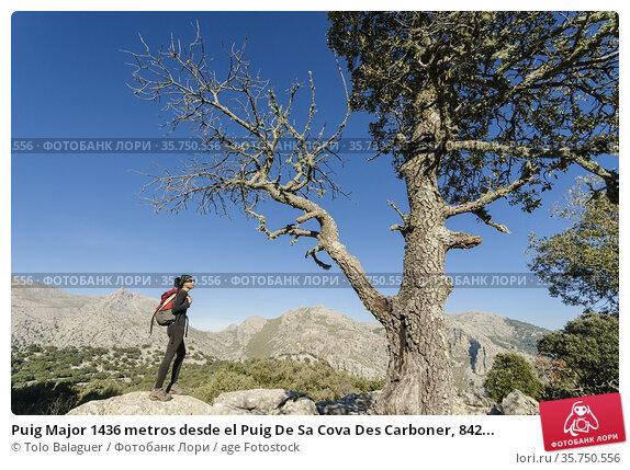 Puig Major 1436 metros desde el Puig De Sa Cova Des Carboner, 842... Редакционное фото, фотограф Tolo Balaguer / age Fotostock / Фотобанк Лори