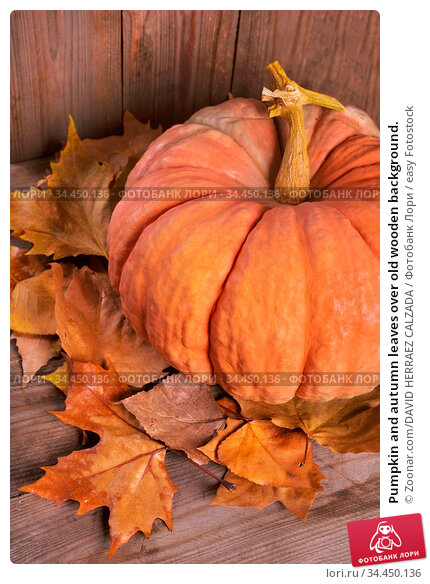 Pumpkin and autumn leaves over old wooden background. Стоковое фото, фотограф Zoonar.com/DAVID HERRAEZ CALZADA / easy Fotostock / Фотобанк Лори