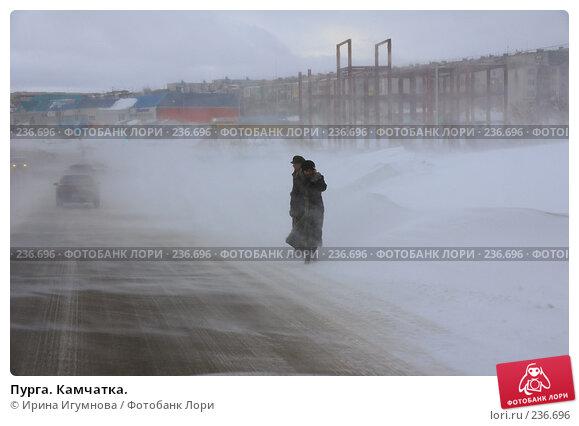Пурга. Камчатка., фото № 236696, снято 2 марта 2008 г. (c) Ирина Игумнова / Фотобанк Лори