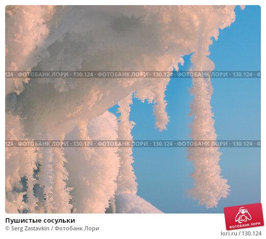 Пушистые сосульки, фото № 130124, снято 11 декабря 2005 г. (c) Serg Zastavkin / Фотобанк Лори