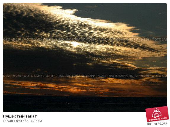 Купить «Пушистый закат», фото № 9256, снято 12 августа 2004 г. (c) Ivan / Фотобанк Лори