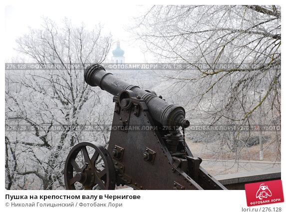 Пушка на крепостном валу в Чернигове, фото № 276128, снято 12 февраля 2008 г. (c) Николай Голицынский / Фотобанк Лори