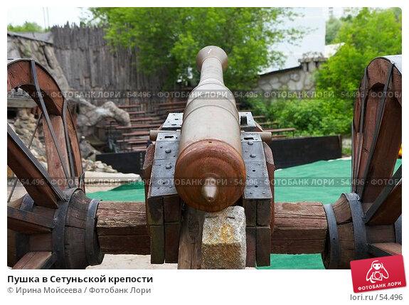 Пушка в Сетуньской крепости, эксклюзивное фото № 54496, снято 10 июня 2007 г. (c) Ирина Мойсеева / Фотобанк Лори