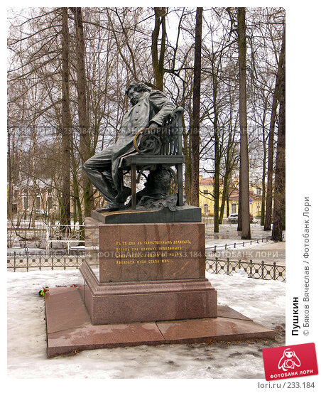 Пушкин, фото № 233184, снято 27 февраля 2008 г. (c) Бяков Вячеслав / Фотобанк Лори