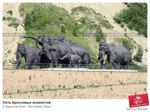 Пять бронзовых мамонтов, фото № 338852, снято 23 июня 2008 г. (c) Круглов Олег / Фотобанк Лори