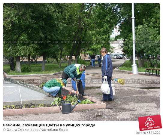 Рабочие, сажающие цветы на улицах города, фото № 321220, снято 4 июня 2008 г. (c) Ольга Смоленкова / Фотобанк Лори