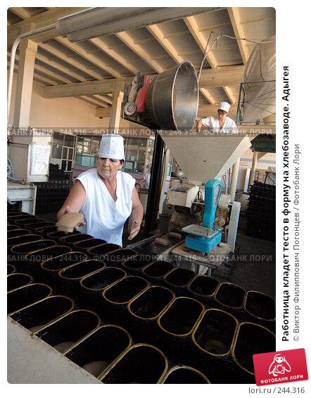 Работница кладет тесто в форму на хлебозаводе. Адыгея, фото № 244316, снято 14 сентября 2006 г. (c) Виктор Филиппович Погонцев / Фотобанк Лори