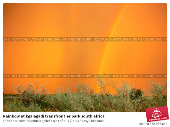 Rainbow at kgalagadi transfrontier park south africa. Стоковое фото, фотограф Zoonar.com/matthieu gallet / easy Fotostock / Фотобанк Лори