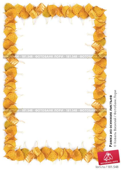 Рамка из осенних листьев, фото № 181548, снято 30 апреля 2017 г. (c) Коваль Василий / Фотобанк Лори