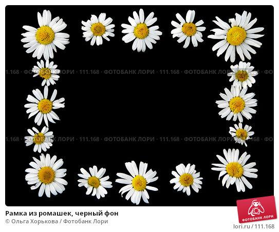 Рамка из ромашек, черный фон, фото № 111168, снято 23 июля 2007 г. (c) Ольга Хорькова / Фотобанк Лори