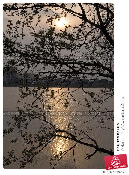 Ранняя весна, фото № 275472, снято 13 апреля 2008 г. (c) Наталья Чуб / Фотобанк Лори