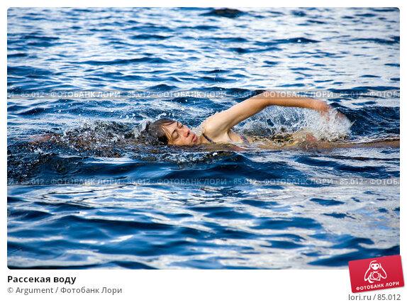 Купить «Рассекая воду», фото № 85012, снято 19 августа 2007 г. (c) Argument / Фотобанк Лори