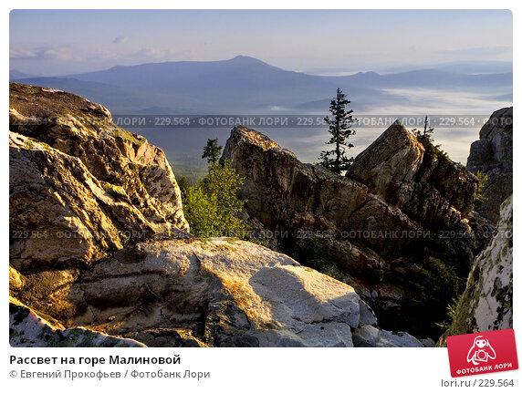 Рассвет на горе Малиновой, фото № 229564, снято 8 июля 2007 г. (c) Евгений Прокофьев / Фотобанк Лори