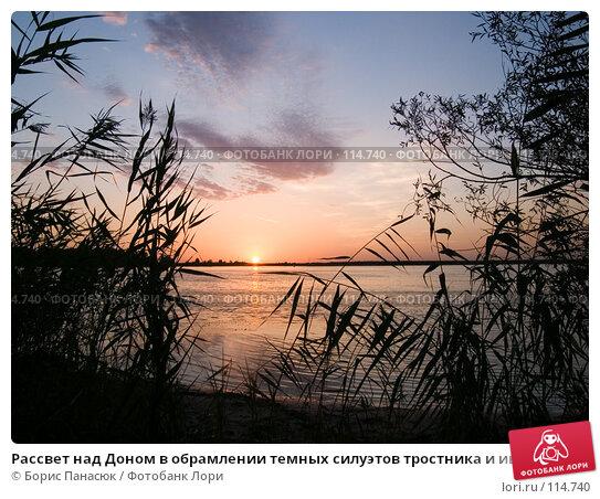 Рассвет над Доном в обрамлении темных силуэтов тростника и ивы, фото № 114740, снято 24 августа 2006 г. (c) Борис Панасюк / Фотобанк Лори