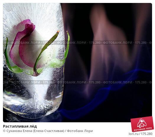 Растапливая лёд, фото № 175280, снято 10 октября 2006 г. (c) Суханова Елена (Елена Счастливая) / Фотобанк Лори