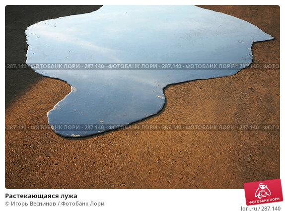 Растекающаяся лужа, фото № 287140, снято 12 мая 2008 г. (c) Игорь Веснинов / Фотобанк Лори