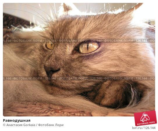 Равнодушная, фото № 126144, снято 3 мая 2006 г. (c) Анастасия Gorkaia / Фотобанк Лори