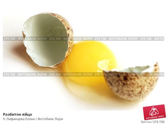 Разбитое яйцо, фото № 215156, снято 4 марта 2008 г. (c) Лифанцева Елена / Фотобанк Лори