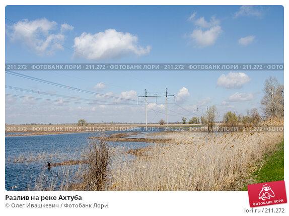 Разлив на реке Ахтуба, фото № 211272, снято 22 апреля 2007 г. (c) Олег Ивашкевич / Фотобанк Лори