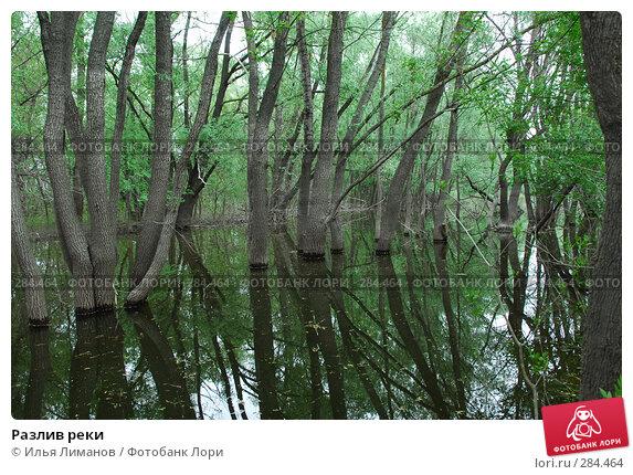 Разлив реки, фото № 284464, снято 1 мая 2008 г. (c) Илья Лиманов / Фотобанк Лори