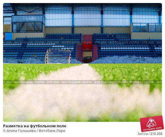 Купить «Разметка на футбольном поле», эксклюзивное фото № 210208, снято 26 февраля 2008 г. (c) Алина Голышева / Фотобанк Лори