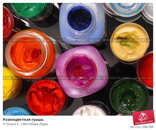 Разноцветная гуашь, фото № 204760, снято 29 января 2006 г. (c) Ольга С. / Фотобанк Лори