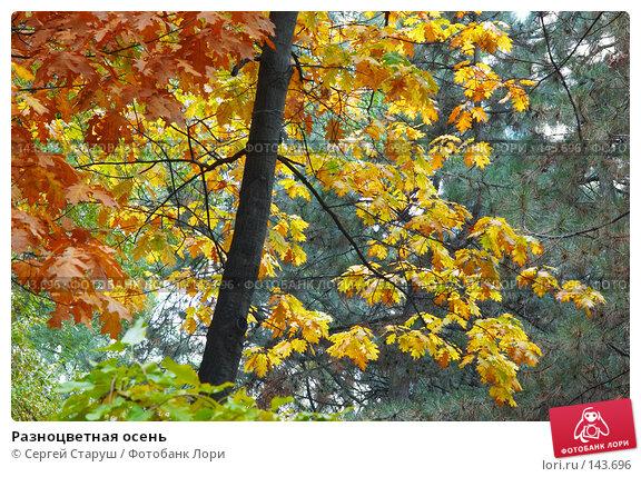 Разноцветная осень, фото № 143696, снято 27 октября 2007 г. (c) Сергей Старуш / Фотобанк Лори