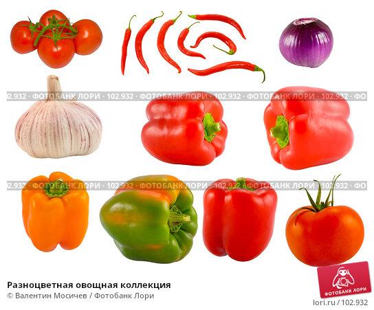 Разноцветная овощная коллекция, фото № 102932, снято 28 октября 2016 г. (c) Валентин Мосичев / Фотобанк Лори